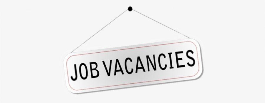 Info Lowongan Kerja 2021